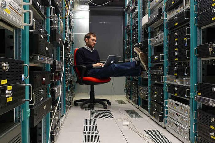 Network Engineer Salary Salaries Wiki