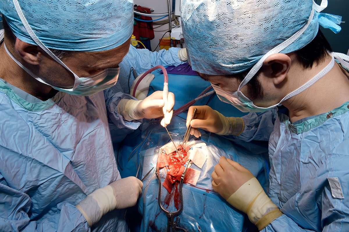 Brain surgery operation